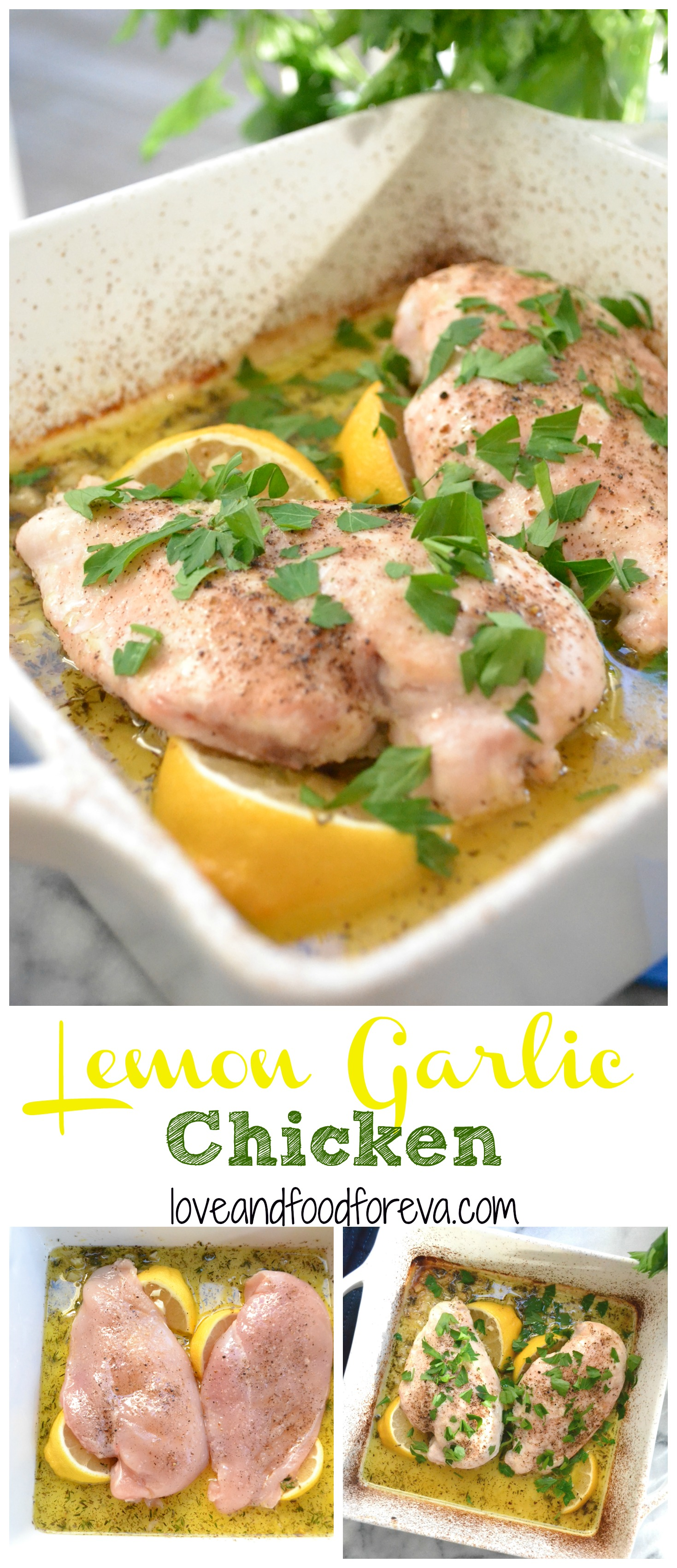 Lemon Garlic Chicken - a fresh, simple and quick dinner your whole family will love!